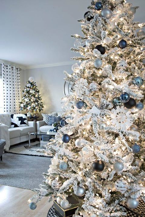 FENG SHUI FOR DECEMBER …   What's in store this month …...